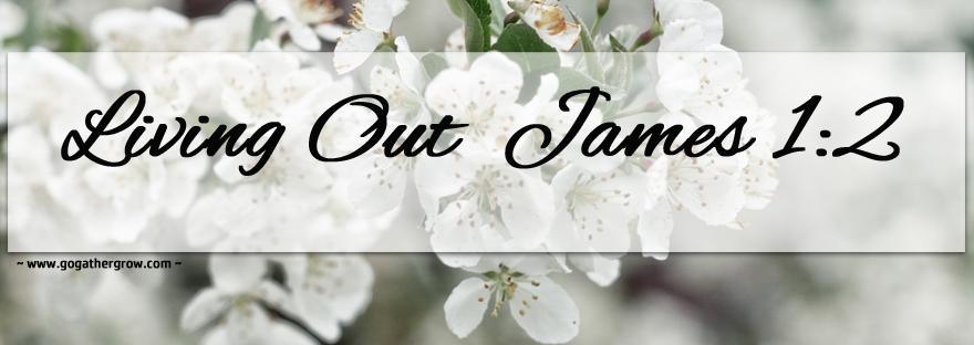 James 1:2 A Testimony of Faith on Joy in Adversity