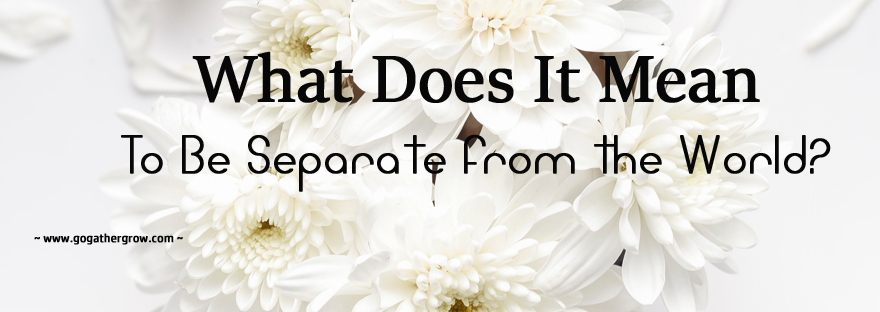 What Does It Mean to Be Separate from the World