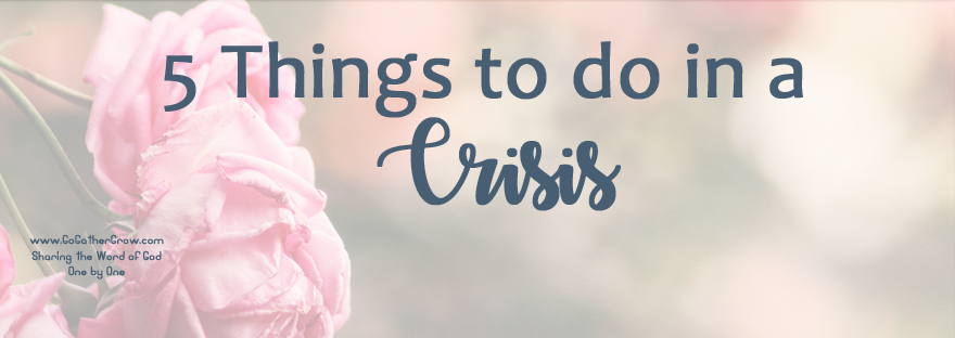5 things to do in a crisis